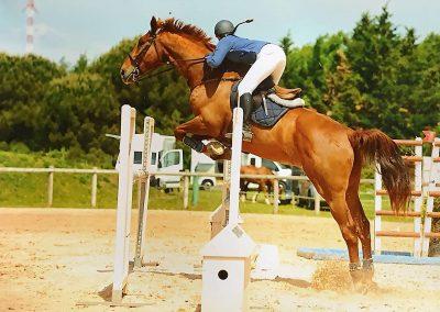 Compétition Chloé et Mimi_Ecurie Atout Coeur